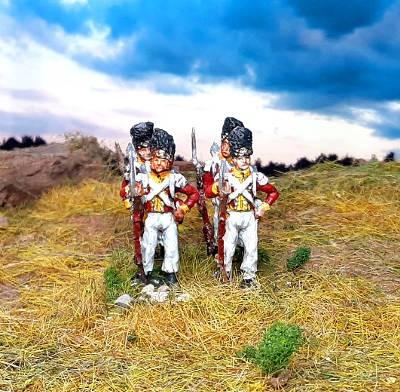 1810 -1813: Königreich Sachsen - Leib-Grenadier-Garde (mit Bärenfellmütze)